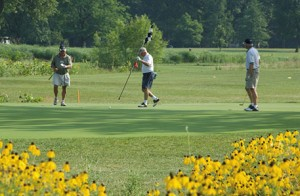FP_golf